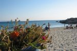 Spiaggia Mikri Vigla di Naxos