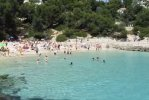 Spiaggia cala comptessa maiorca.jpg