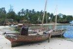 Spiaggia Kizimkazi di Zanzibar