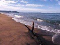 Spiaggia Parco di Rimigliano