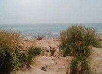Spiaggia di Scano del Gallo.jpg