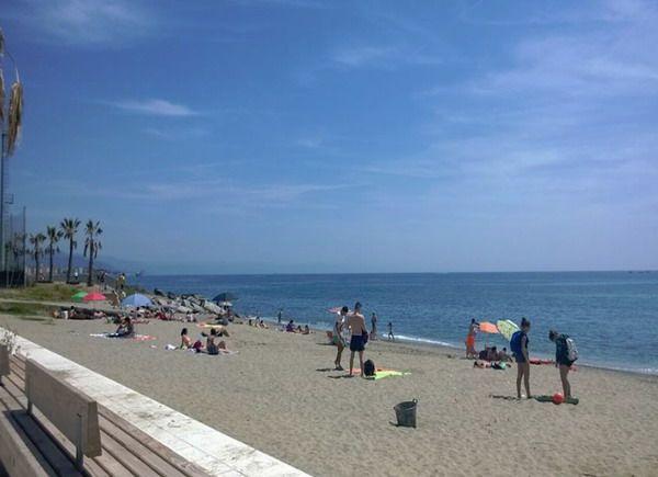 Matrimonio Spiaggia Savona : Spiaggia zinola di savona qspiagge