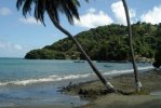 Mount Irvine Beach di Tobago