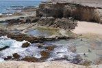 Spiaggia Little Bay di Barbados.jpg