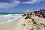 Spiaggia Saline Beach di San Barth.jpg