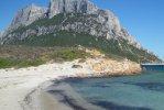 Spiaggia di Spalmatore Isola Tavolara.jpg