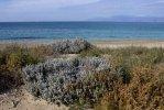 Spiaggia Almyros di Corfù