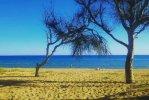 Spiaggia della Riserva del Belice.jpg