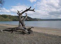 Spiaggia di Nacascolo