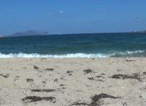 Spiaggia Saline di Olbia.jpg