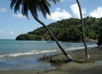 Mount Irvine Beach di Tobago
