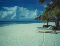 Spiagge di Bantayan Cebu