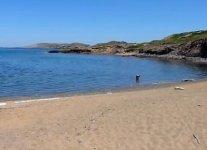spiaggia cala mica minorca.jpg