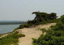 Spiaggia Salina dei Monaci di Manduria