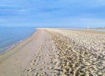 Mangroovy Beach.jpg