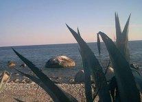 Costa dei Gelsomini di Reggio Calabria