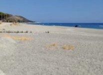 Spiaggia di Palizzi.jpg