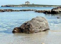 Spiagge Isola di Capo Passero
