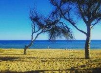 Spiaggia della Riserva del Belice