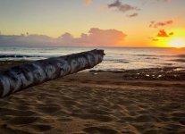 Indicators Beach di Porto Rico.jpg